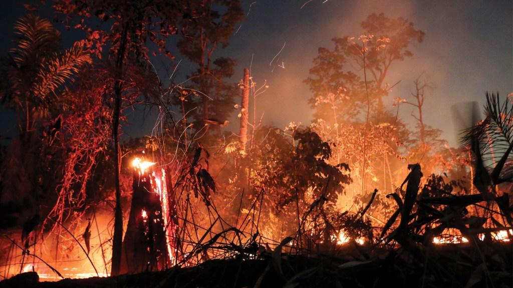 Liberan a voluntarios acusados de provocar incendios en la Amazonía - Foto de EFE