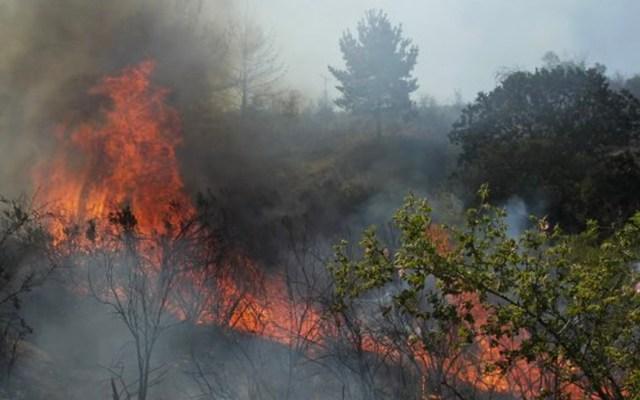Incendios consumen más de 2 mil 500 hectáreas en el centro de Chile - Incendios en Chile