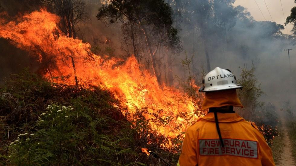 """Consideran """"sin precedentes"""" incendios forestales en Australia - Labores de bomberos contra incendios en Nueva Galaes del Sur. Foto de EFE"""