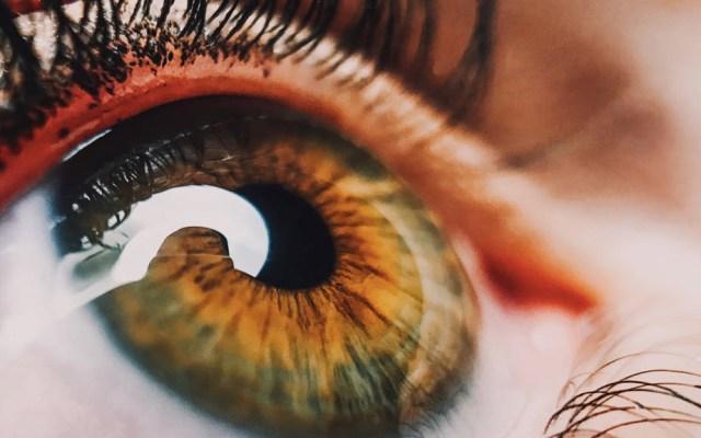 Cada año en el mundo hay hasta 8 mil casos de cáncer de ojo - ojo salud