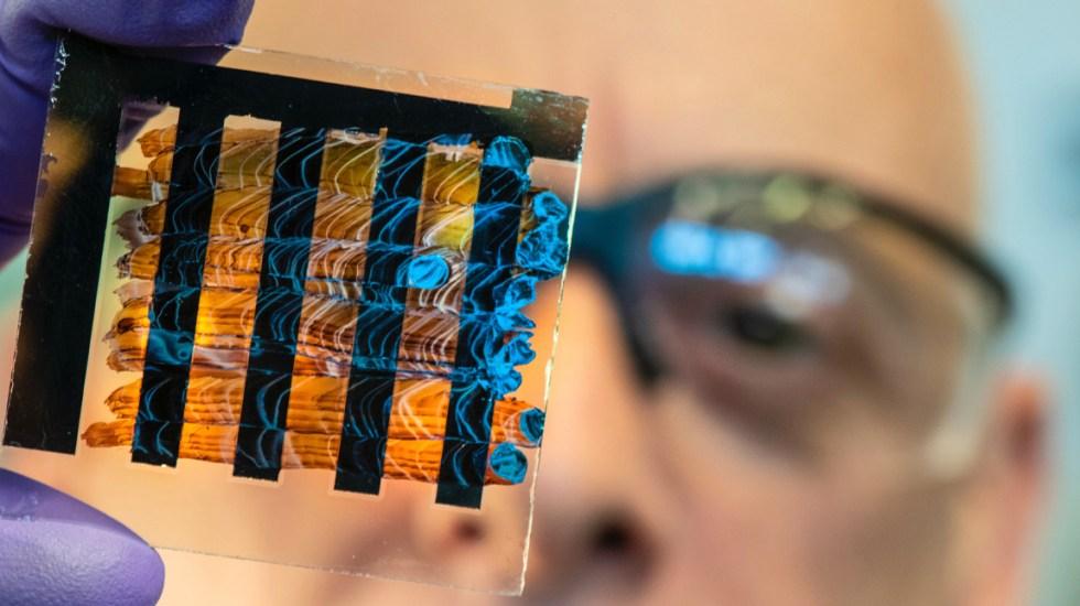 Desarrollan biopsia virtual que detecta quistes en páncreas con mayor precisión - Biopsia virtual. Foto de Unplash