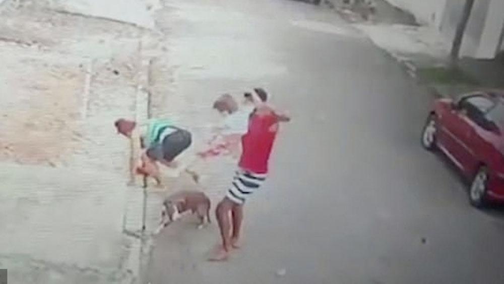#Video Hombre salva a niño de cuatro años de ataque de pitbull - #Video Hombre salva a niño de cuatro años de ataque de pitbull