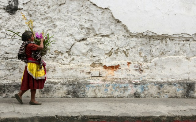 Desigualdad social, principal causa de la crisis que vive América Latina - Foto de Scott Umstattd para Unsplash