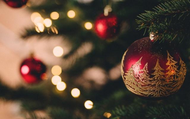 ¿Cuándo inician las vacaciones escolares de fin de año? - Navidad. Foto de freestocks.org / Unsplash