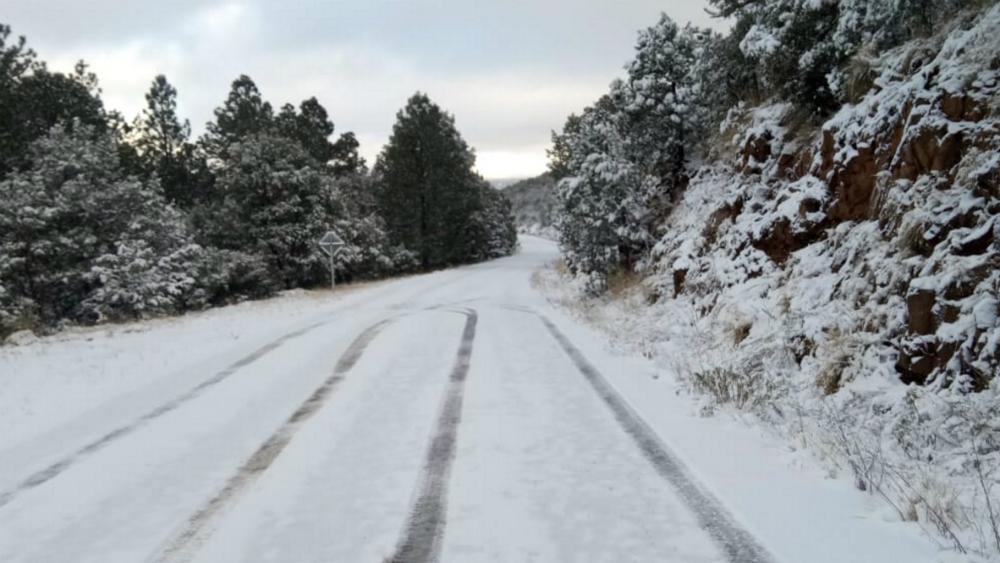 Caída de nieve o aguanieve prevén esta noche en tres estados - Foto de Notimex