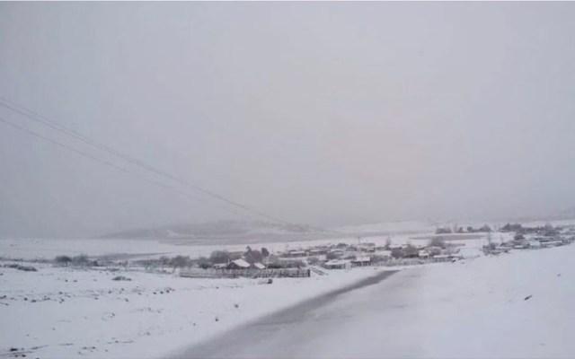 Primera nevada de la temporada en Nuevo León - Primera nevada de la temporada azota Nuevo León