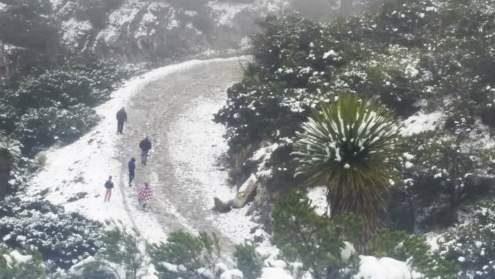 Pronostican nieve o aguanieve en 13 estados para este domingo - Foto de Notimex
