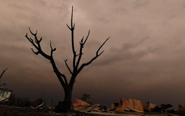 Se eleva a 26 el número de muertos por incendios en Australia - Afectación por incendios forestales en Australia. Foto de EFE
