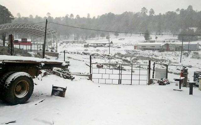 Suman nueve municipios con caída de nieve en Durango - Suman nueve municipios con caída de nieve en Durango