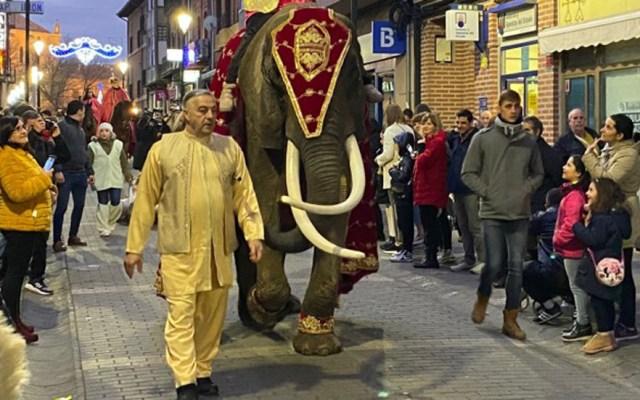 #Video Elefanta tira por accidente a niños y alcalde en desfile de Reyes Magos - Elefanta 'Alegre' utilizada en desfile de Reyes Magos en Medina del Campo. Foto de La Voz de Medina