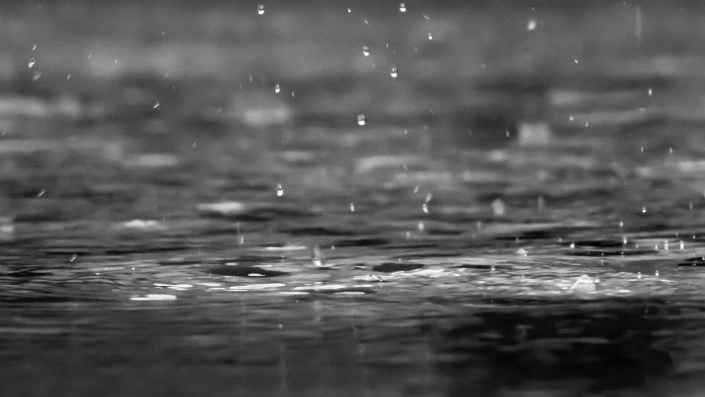 Preven lluvias, granizo y viento en Coahuila, Tamaulipas y Nuevo León - Lluvia. Foto de reza shayestehpour /Unsplash