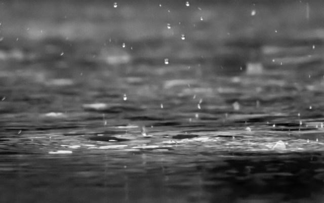 Alerta Amarilla por lluvia este sábado en la capital - Foto de reza shayestehpour para Unsplash