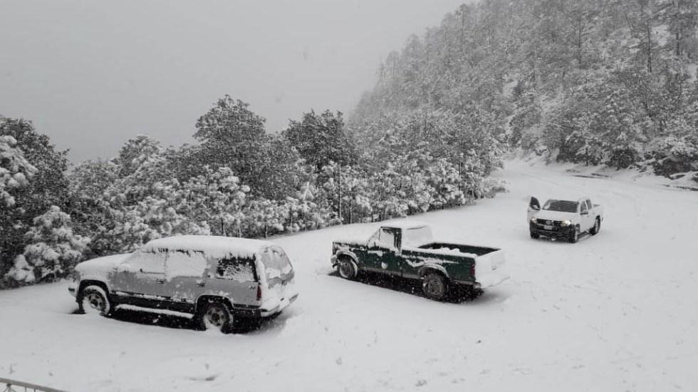 Municipios de Durango reciben 2020 con caída de nieve - Nevadas Durango estado nieve