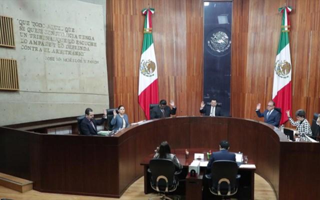 Tribunal Electoral anula Consejo de Morena convocado por Bertha Luján
