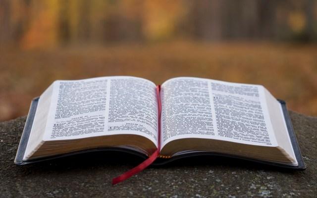 Sentencian a pastor evangélico en Bolivia por violación de menor - Biblia. Foto de Aaron Burden / Unsplash