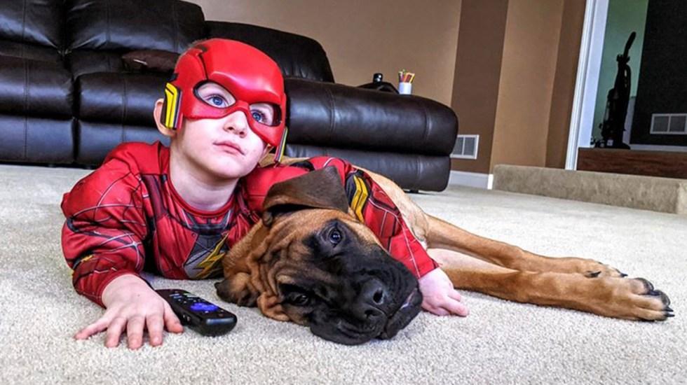 Perro acompaña a niño en castigo por pelear con su hermana - Peyton y Dash. Foto de @jillian.meadows.7