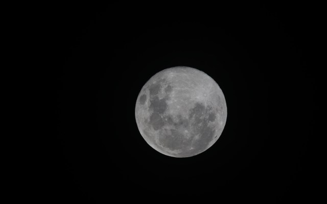 Este fin de semana se podrá observar la Superluna y Mercurio - Superluna. Foto de Marcus Dall Col / Unsplash