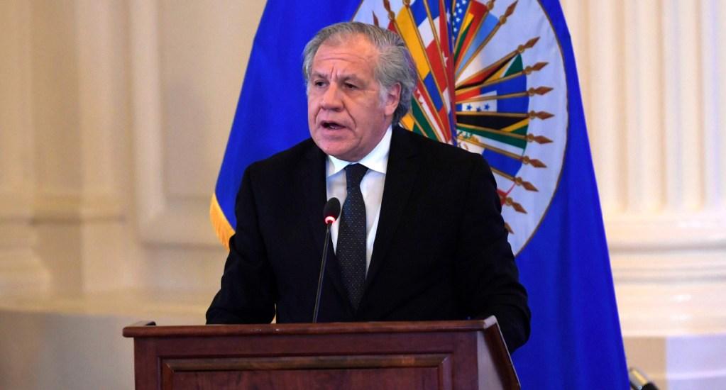México acusa a secretario de OEA de 'lastimar democracia de Bolivia' - Almagro recibió el apoyo de 23 de los 34 miembros activos de la OEA, mientras que 10 países respaldaron a María Fernanda Espinosa