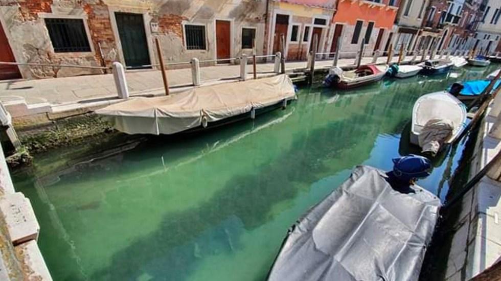 Canales de Venecia lucen cristalinos por falta de turistas por COVID-19 - En redes sociales, usuarios compartieron videos y fotos de los canales visiblemente más limpios, señalando que se debe a la falta de gente por el coronavirus