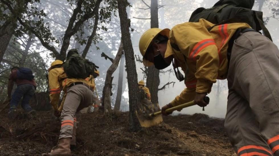Mueren 9 personas por incendios forestales en Oaxaca - Incendios forestales Oaxaca atención