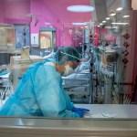 Vacuna contra el COVID-19 obtiene resultados prometedores en pruebas en ratas