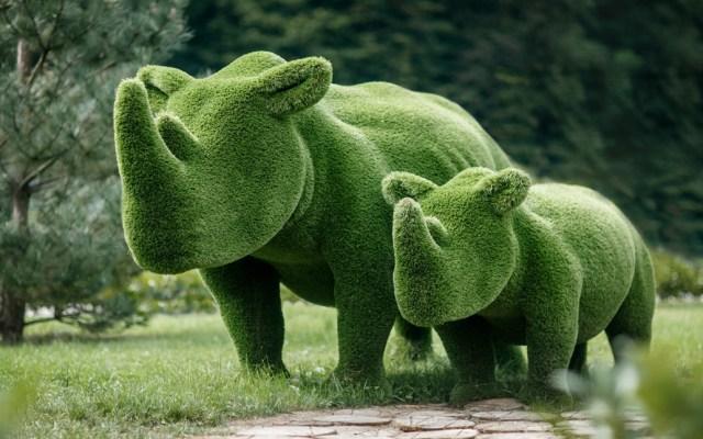 Roban esculturas de animales valuadas en 14 mil dólares en Florida - Esculturas de rinocerontes de Bacho Factory
