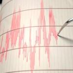 Sismo en el Caribe magnitud 5.7 se percibe en Quintana Roo - Sismógrafo. Foto de El Financiero