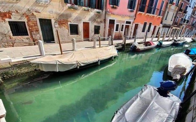 Canales de Venecia se aclararon por reducción en tráfico de góndolas, concluye estudio - Agua de canales de Venecia se aclaró por la falta de tráfico de góndolas