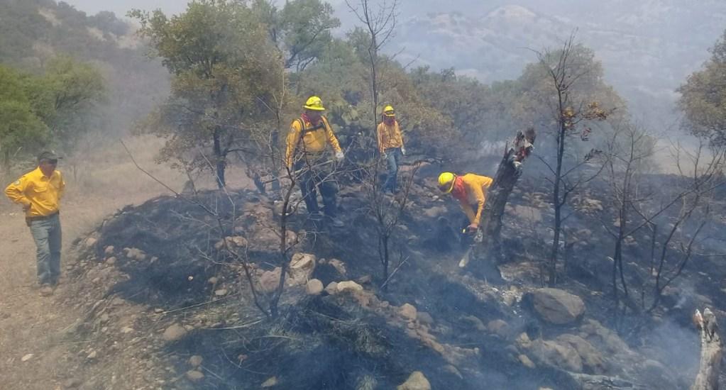 Permanecen activos 55 incendios forestales en 14 estados - Control y liquidación de incendio forestal en Sonora. Foto de @CONAFOR