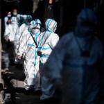 Viróloga advierte que la humanidad está en la punta del iceberg del COVID-19