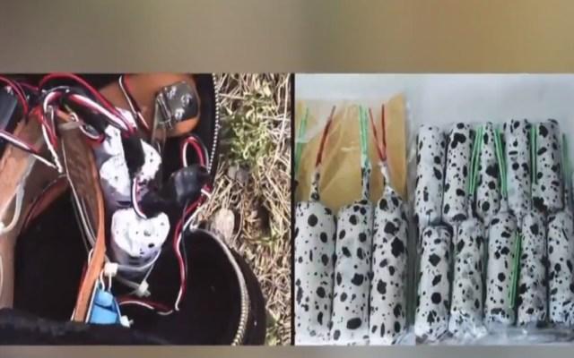 Delincuentes del robo a banco con 'cinturón bomba' estarían en Ecatepec - 'Cinturón bomba' con más de 30 gr de pólvora atado a Karina S. Foto de Noticieros Televisa