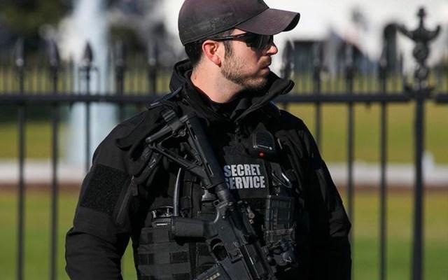 Servicio Secreto de EE.UU. admite que usó gas pimienta en protesta para abrir paso a Trump - Elemento del Servicio Secreto de Estados Unidos