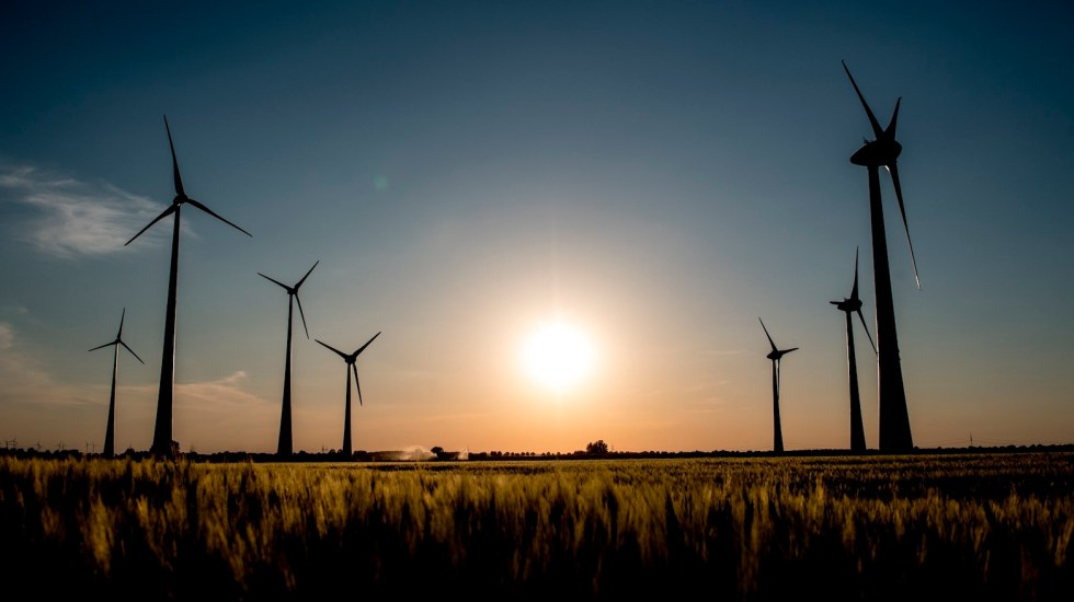 Informe de la ONU sobre energías renovables señala preocupación por política mexicana en el sector - Foto de EFE