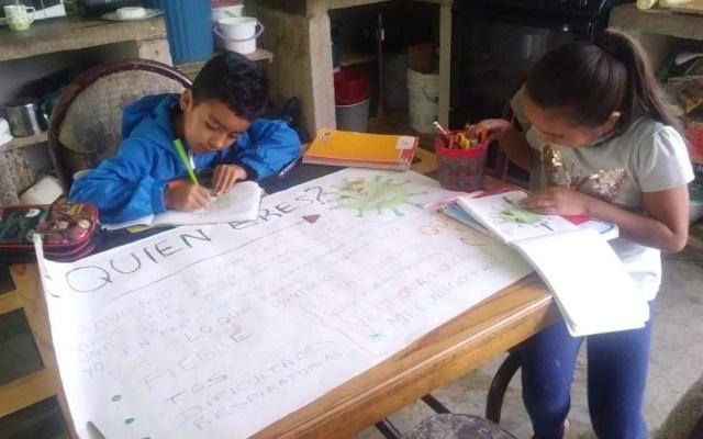 Ciclo escolar en Michoacán concluirá este 5 de junio - Niños de Michoacán hacen tarea en su casa ante la emergencia sanitaria por COVID-19. Foto de @SE_Michoacan