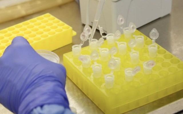 Medicamentos contra hepatitis C impiden duplicidad del COVID-19 - Foto de @agencia_fiocruz