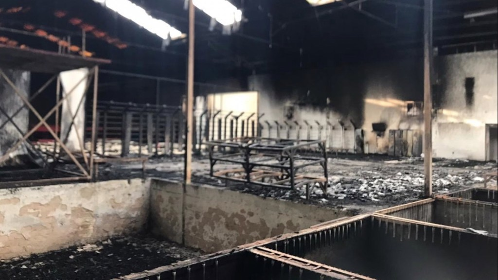 Se incendia gimnasio del Code Jalisco donde entrena Paola Espinosa - Foto de Twitter Paola Espinosa