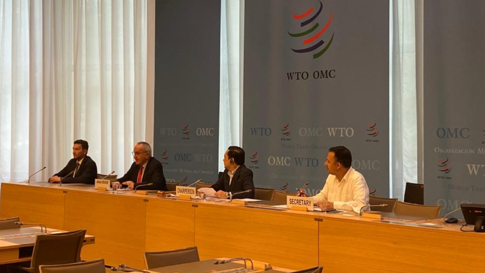 Presenta Seade candidatura a OMC ante diversos grupos - Foto de @MX_WTO_Mission