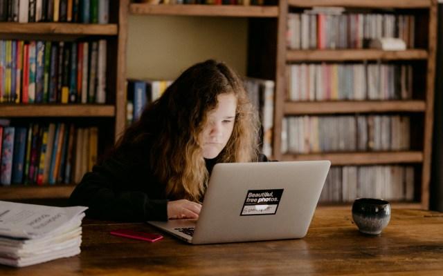EE.UU. negará ingreso a estudiantes extranjeros para cursos en línea - Joven estudia en línea. Foto de Annie Spratt / Unsplash