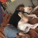 Murió el actor Pablo Fustec tras intentar rescatar a su perro
