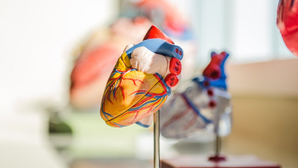 Insuficiencia cardíaca afecta a más de 2.4 millones de mexicanos - insuficiencia cardíaca