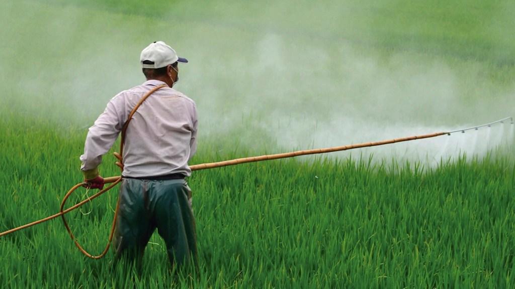 Semarnat se deslinda de anteproyecto sobre glifosato; exige disculpa pública a secretario de Agricultura - Foto de Semarnat