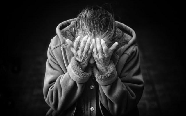Identificar signos y síntomas del Alzheimer favorece su atención oportuna y mejora calidad de vida: IMSS - Foto de Cristian Newman para Unsplash