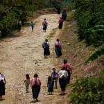 Comunidades indígenas de Chiapas preparan regreso a clases presenciales; aseguran que no existe el COVID-19