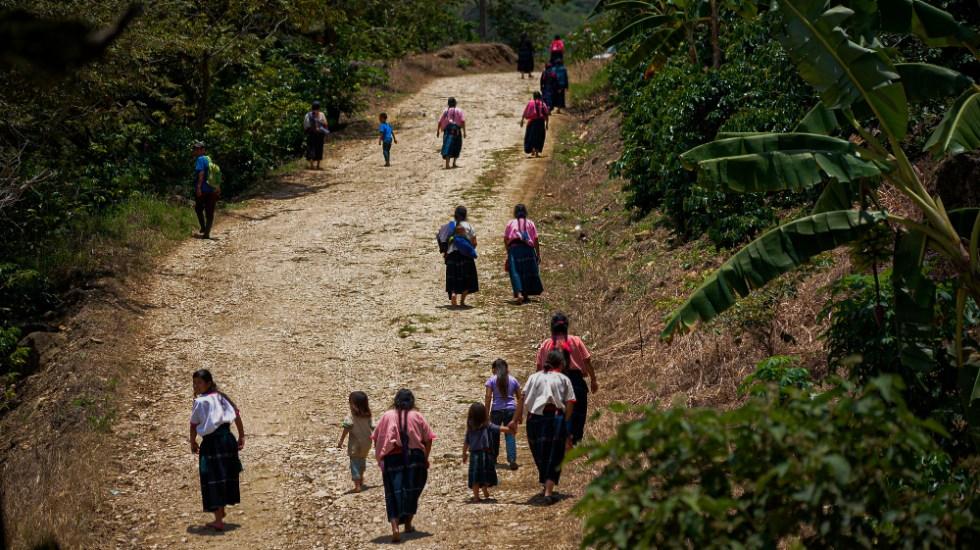 Comunidades indígenas de Chiapas preparan regreso a clases presenciales; aseguran que no existe el COVID-19 - Foto de EFE