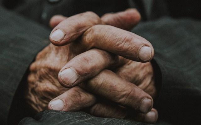 Envejecimiento aumentará casos de cáncer hematológico en el mundo - Manos de adulto mayor. Foto de Zahra Amiri / Unsplash