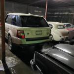 Matamoros Tamaulipas GOPES aseguramiento vehiculos aves tigres 11