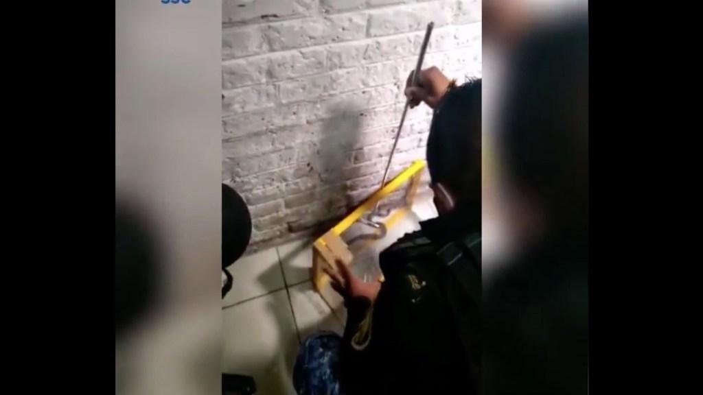 #Video Víbora de cascabel muerde a paciente del hospital de Tláhuac - Captura de pantalla