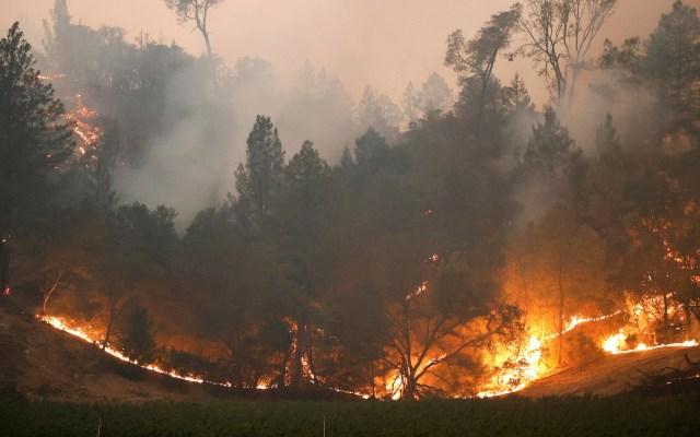 Incendios en California arrasan la cifra récord de 1.62 millones de hectáreas - Incendio en California, EE.UU. Foto de EFE