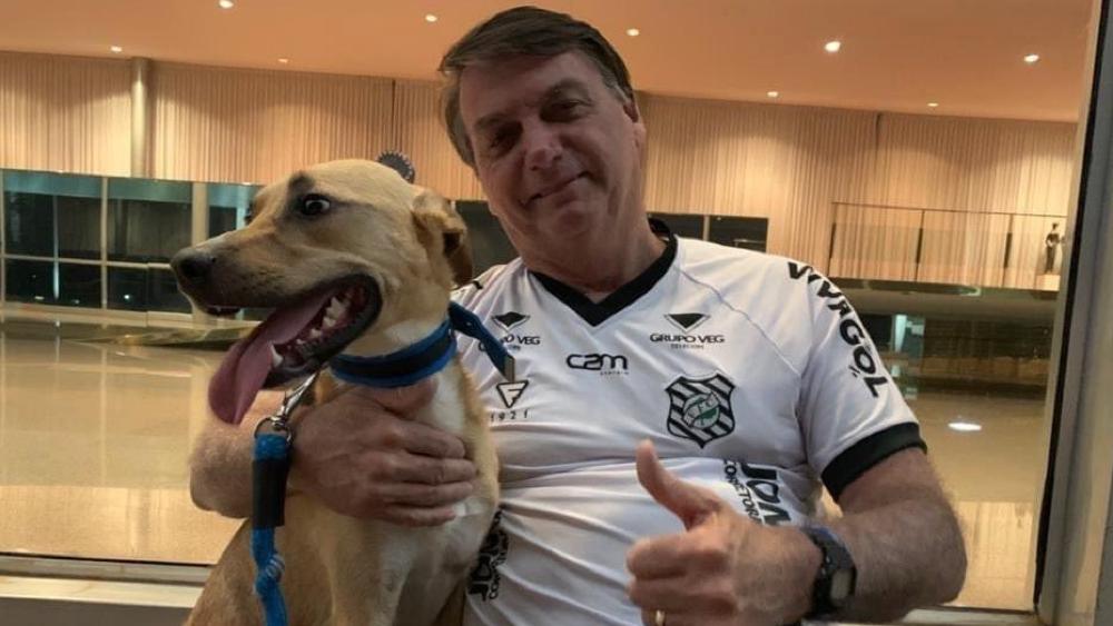 Bolsonaro dice que en su casa las vacunas son solo obligatorias para el perro. Noticias en tiempo real