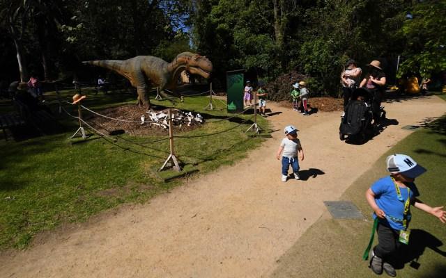 Reabren Zoológico de Melbourne, Australia - Decenas de familias visitan el Zoológico de Melbourne, en Australia, que reabrió sus puertas con estrictas medidas sanitarias contra el COVID-19. Foto de EFE